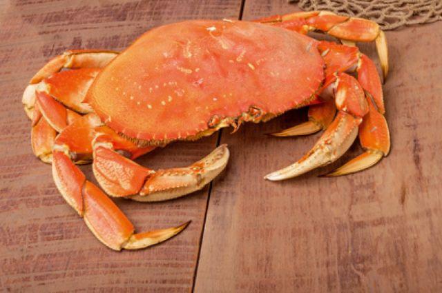 Rencontre un pêcheur de crabe