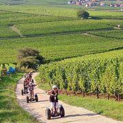 Trois activités «de ouf'»  à tester dans le Haut-Rhin cet été !