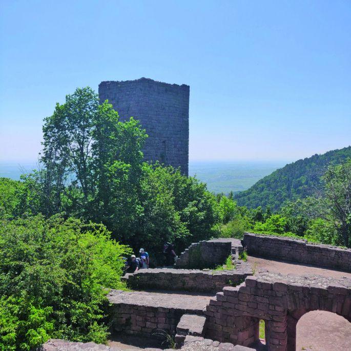 Les 3 châteaux d'Eguisheim