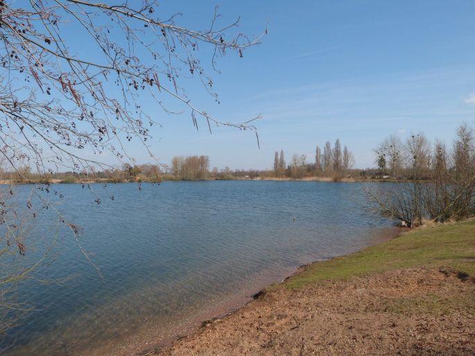 Les 3 km du plan d'eau de Brumath