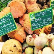 Les Chants de la Terre à Colmar : vos légumes d\'hiver... bio et locaux !