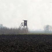 Organisation de la chasse en Alsace