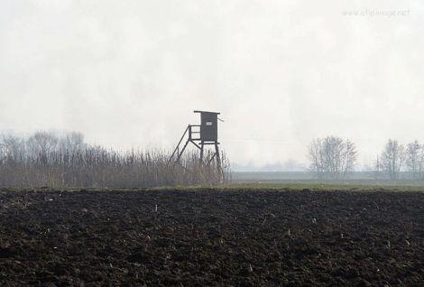 Les communes d\'Alsace ont tous les droits sur la chasse