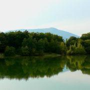 5 plans d\'eau à redécouvrir en Alsace