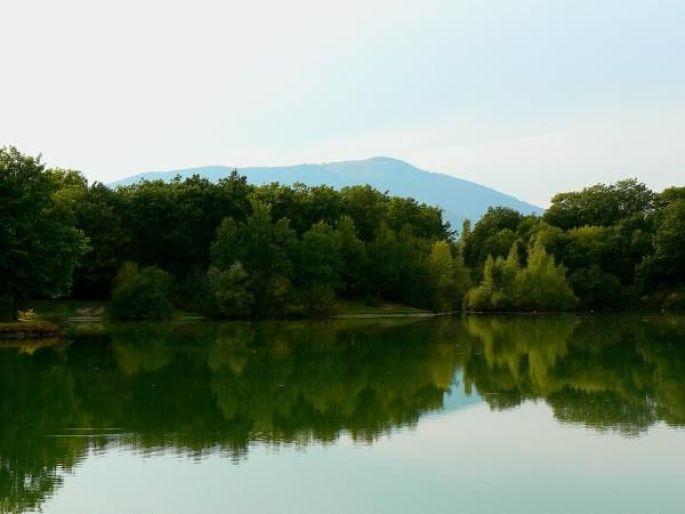 Les étangs de la forêt du Nonnenbruch