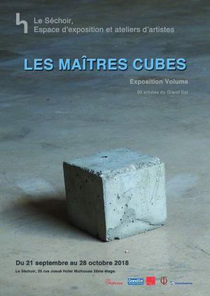 Les Maïtres Cubes