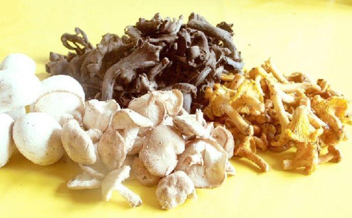 Les recettes à base de champignon