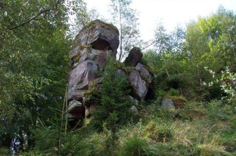 Les ruines du château de Salm sont dispersées dans la forêt environnante