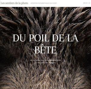 Les Sentiers de la photo (Le Haut du Tôt, Vosges) prennent du\