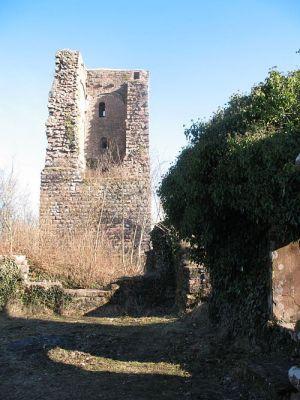 Les vestiges du château du Grand Geroldseck sont abimés mais pas dénués d\'intérêt