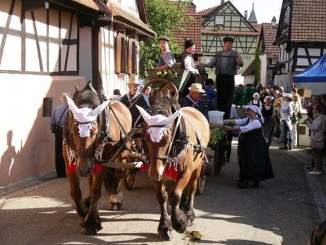Lors de la Fête des Vendanges, tout le village de Cleebourg est à la fête
