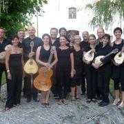 Mandolines buissonnières de Lutterbach