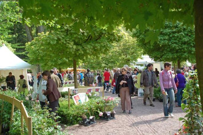 Plus de 12000 visiteurs sont attendus  pour cette 8e édition du Marché aux Plantes