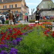 Marché aux fleurs à Altkirch 2018