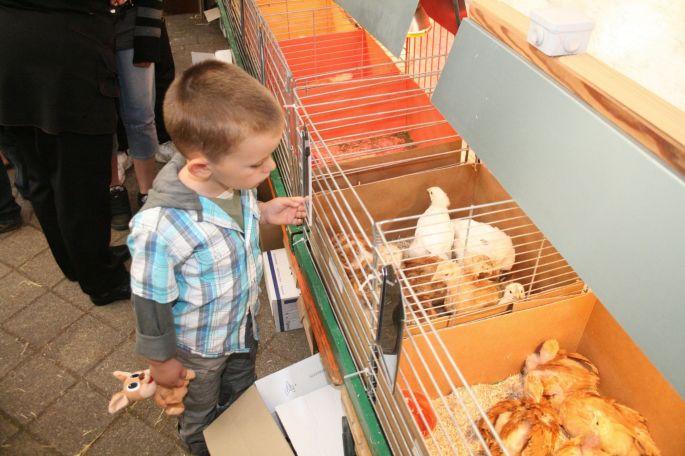 Le marché aux œufs de Wintzfelden-Soultzmatt
