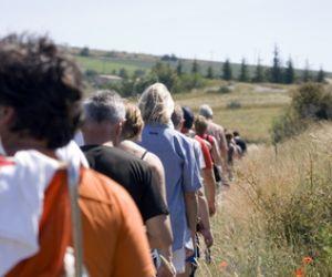 Marche populaire à Hattstatt 2020