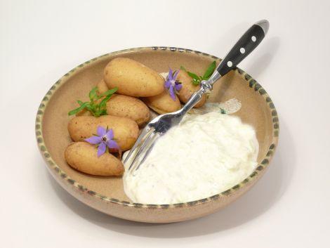 Menu fromage blancalsacien