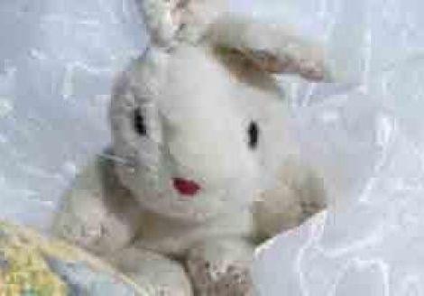 Mini-polaire