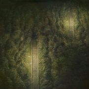 Mitsuo Shiraishi : Ténèbres lumineuses