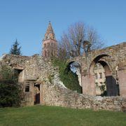 Escapade à Munster, entre histoire et nature