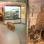 Musée Mémorial des Combats de la Poche de Colmar