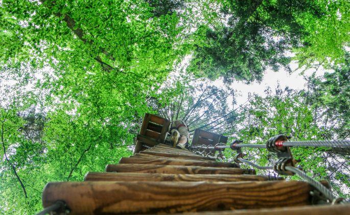 Natura Parc à Ostwald, l\'aventure dans les arbres