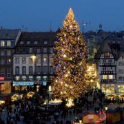 Noël 2012 à Strasbourg : Le grand sapin