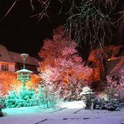 Noël 2018 à Sélestat : Le jardin du sapin