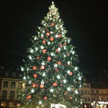 Noël 2017 à Strasbourg : le sapin de la place Kleber