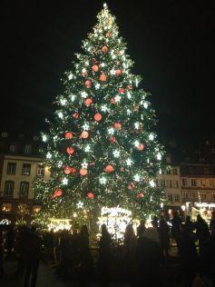 Le sapin de la Place Kléber à Strasbourg, version 2016
