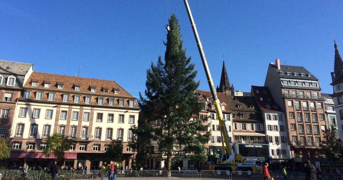 Le grand sapin de no l de strasbourg march de no l 2017 sur la place kl ber - Marche de noel mulhouse 2017 ...