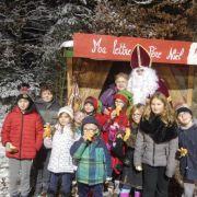 Noël 2018 à Lutzelhouse : Le Séquoia de Noël