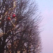 Noël 2018 à Sarre-Union : Marché de Noël
