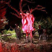Noël 2020 à Altkirch : Marché de Noël et animations