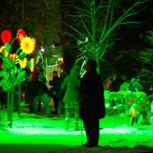 Noël 2018 à Altkirch : La Forêt Enchantée d\'Altkirch