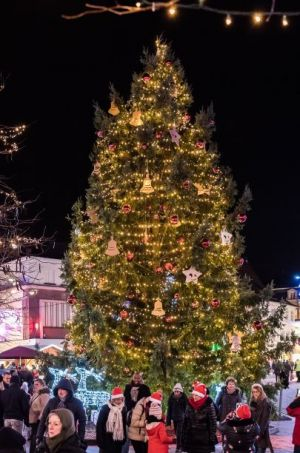 Noël à Haguenau: Marché de Noël