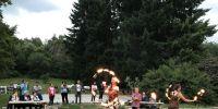 noel du hirtz 2018 : spectacle de feu