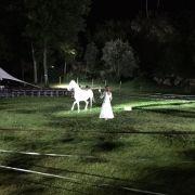 Noël du Hirtz 2018 : Spectacle équestre