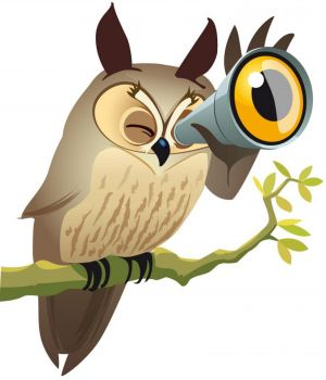 Le Hibou Moyen Duc est l\'emblème de l'Observatoire de la nature à Colmar