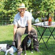 Oies et brebis dans les vignes :  les vins très \
