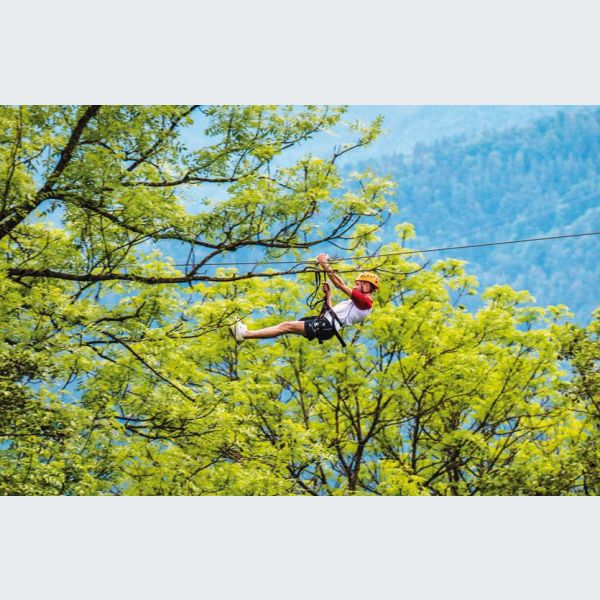 parc alsace aventure à breitenbach, alsace : accrobranche, paintball