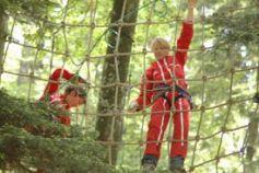 Parc Alsace Aventure : les arbres pour terrain de jeux !