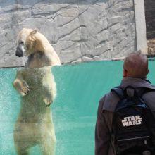 Jardin zoologique : Promenade au zoo de Mulhouse