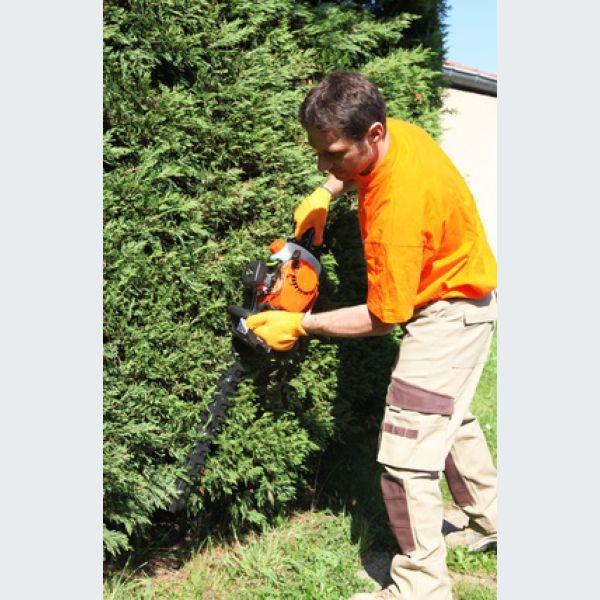 L 39 an vert du jardin staffelfelden paysagiste for Recherche personne pour entretien jardin