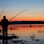 Société de pêche L'APP La Truite