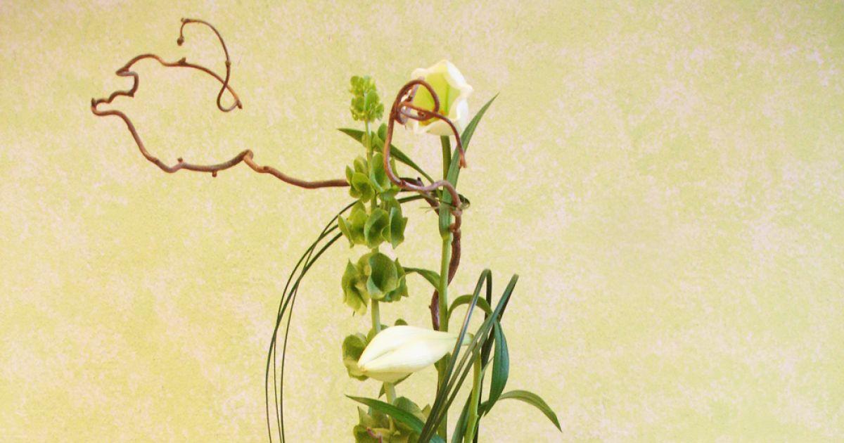 Perle de pluie mulhouse d coration d co florale fleur for Perle d eau decoration florale