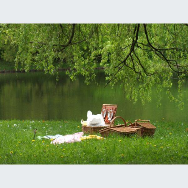 jardin des senteurs mulhouse parc square et jardin. Black Bedroom Furniture Sets. Home Design Ideas