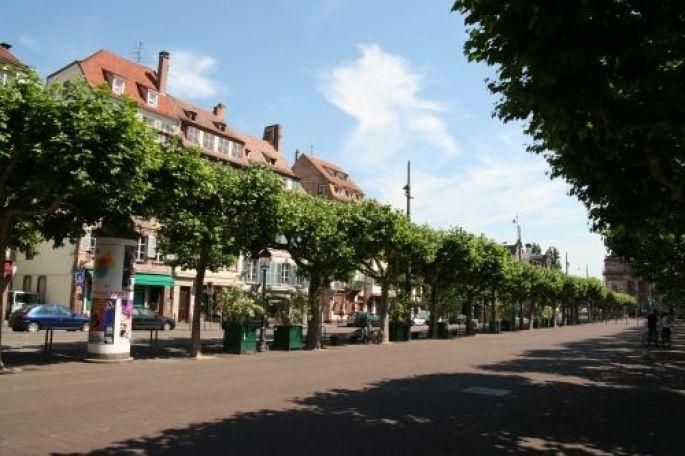 La Place Broglie et son allée bordée d\'arbres
