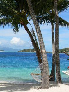 Les agences de voyage sont vos meilleurs partenaires pour des vacances réussies !