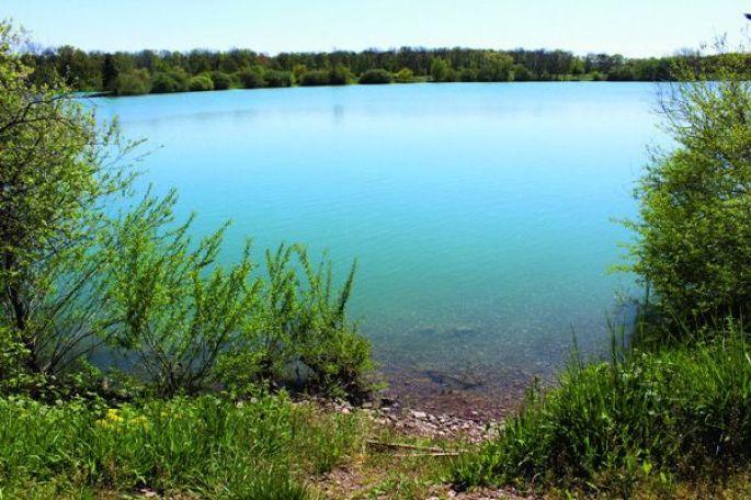 Le plan d'eau de Burnaupt-Le-Bas